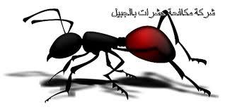 شركات مكافحة حشرات بالجبيل