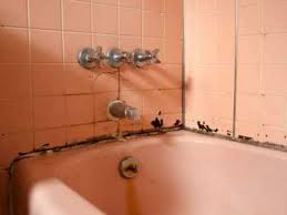 تنظيف الحمام من الكلس